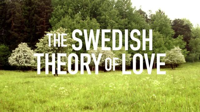 Swedish theory of love